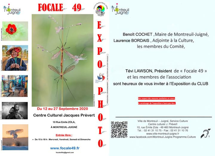 Exposition Focale 49